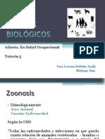 Zoonosis.pdf
