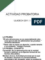 actividad probatoria