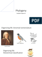 Lecture 12_Phylogeny (1)