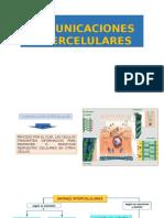 Comunicaciones Intercelulares Autoguardado (1)