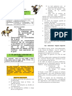 guia20_chilecolonial_historia_5basico (1).doc
