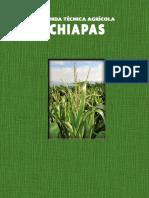05 Chiapas 2015 SIN