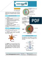 Material 20130916194008teoriavirus