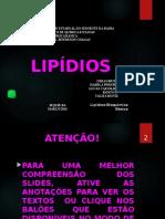 Bioquimica Lipidios Final Dimas