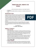 DETERMINACION DEL INDICE DE YODO Y PEROXIDO.docx