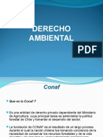 AMBIENTAL PPT