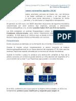 Clase 7B- Cardiopatía Isquémica II
