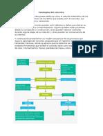 Patologías del concreto.docx
