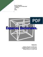 Trabajo de algebra lineal final espacios vectoriales.doc
