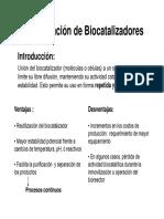 Inmobilización de Biocatalizadores 2015TP