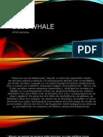 Προσοχή ΟΧΙ στο Blue Whale