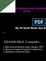 APN 1