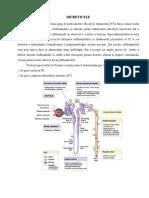 DIURETICELE.pdf