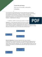 Aporte Individual Departamento Financiero