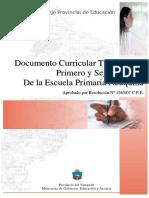 Diseño curricular tercer ciclo (neuquen).pdf