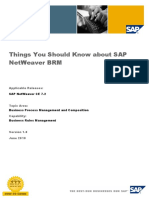 Things You Should Know About SAP NetWeaver BRM