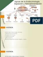 Bases Fisiológicas de La Endocrinología