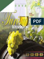 155920879-Turism-Vitivinicol.pdf