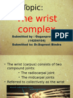 Wrist Joint