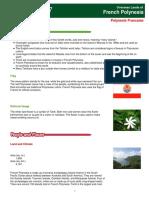polyneisa report