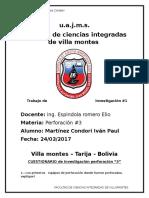 perfo.docx