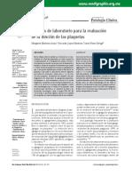 agregamiento plaquetario1