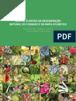 Guia de Plantas Da Regeneracao Natural Do Cerrado e Da Mata Atlantica
