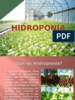 HIDROPONIA.pptx