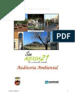 Auditoria Ambiental - Agenda Local 21