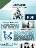 LIDERAZGO PROFESIONAL.ppt