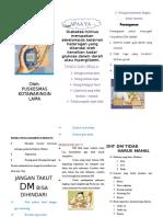 Leaflet DM KOLAM (2)