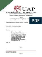 Anatomia-VASOS-Y-NERVIOS-DEL-TORAX.docx