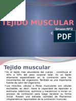 Tejido Muscular Corregido