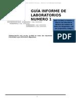 Guia de Informe Laboratorios