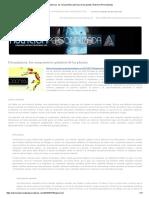 Fitoquímicos, Los Componentes Químicos de Las Plantas _ Nutricion Personalizada