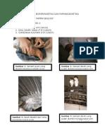 Laporan Sementara Biofarmasetika Dan Farmakokinetika