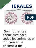 Minerales Alimentacion Animal