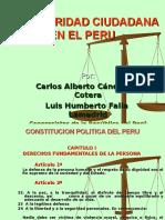 Peru Seguridad Ciudadana (1)