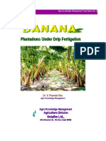 Banana Growing Manual-1 NETAFIM