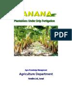 Banana-basic Crop Sheet
