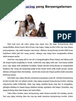 Anjing Dan Kucing Yang Berpengalaman