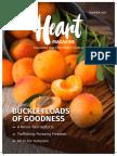 Heart Magazine Spring 2017