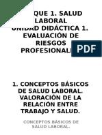EVALUACIÓN DE RIESGOS PROFESIONALES.ppt.pps