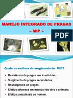 MIP - Mauri