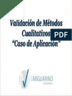 Validacion de Metodos Cualitativos.pdf