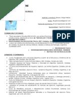 Curriculum Vitae Esp Español