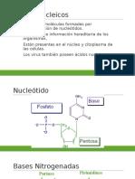 ácidos nucleicos (1)