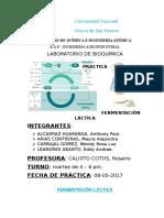 Reporte de Ferm Laactica Copia