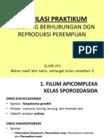 Kompilasi Praktikum Parasit 2016