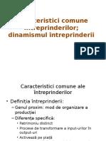 Caracteristici Comune Întreprinderilor